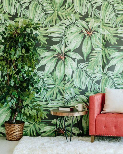 Papel pintado con motivos botánicos