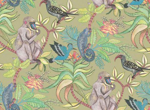 Papel pintado tropical con aves y babuinos