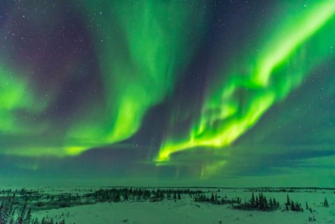 Parallel curtains of aurora as a display starts up at the Churchill Northern Studies Centre