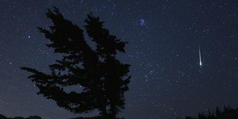 Sky, Black, Nature, Night, Tree, Atmosphere, Star, Darkness, Atmospheric phenomenon, Biome,