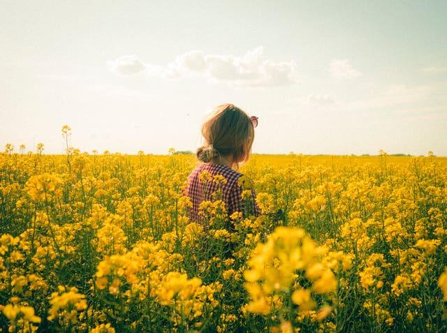 chica en el campo rodeada de flores