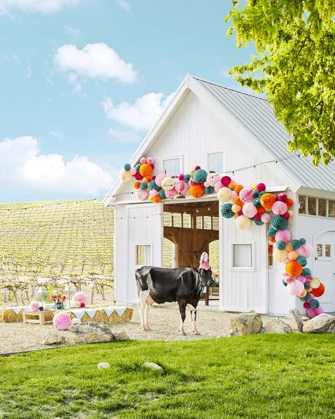 white party barn exterior with cow