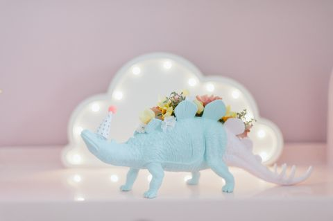 dinosaur decoration