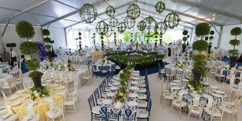 Decoration, Function hall, Chiavari chair, Floristry, Wedding reception, Floral design, Wedding banquet, Banquet, Building, Flower Arranging,