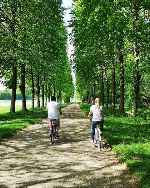 Paseo en bicicleta por Versalles en Airbnb