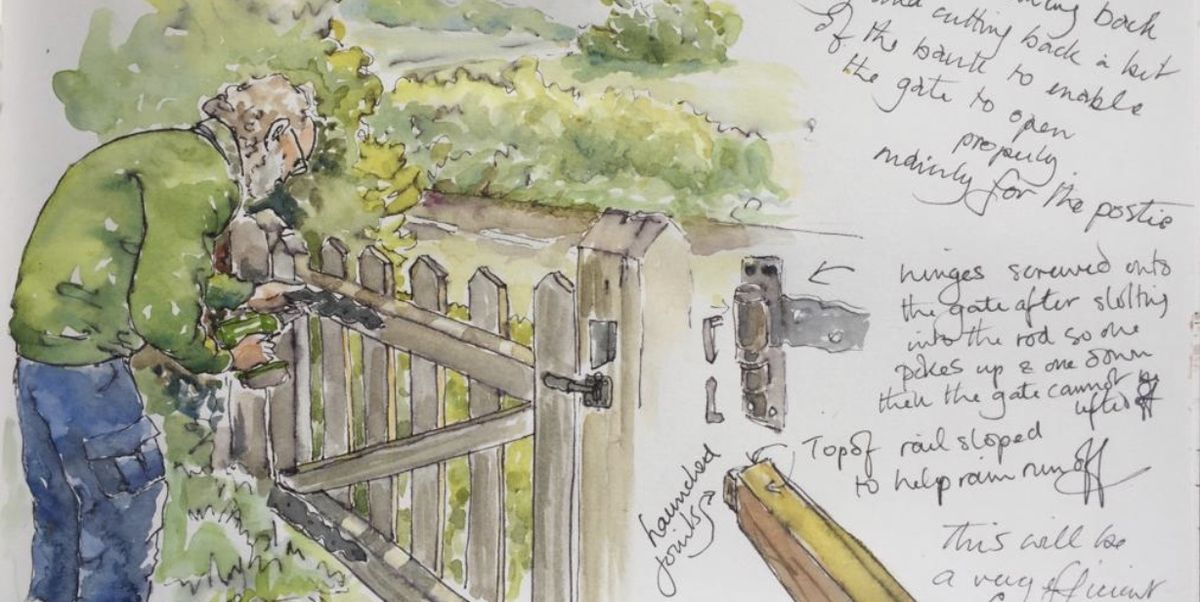 Lady's charming drawings of lockdown in the countryside will put a smile on your face