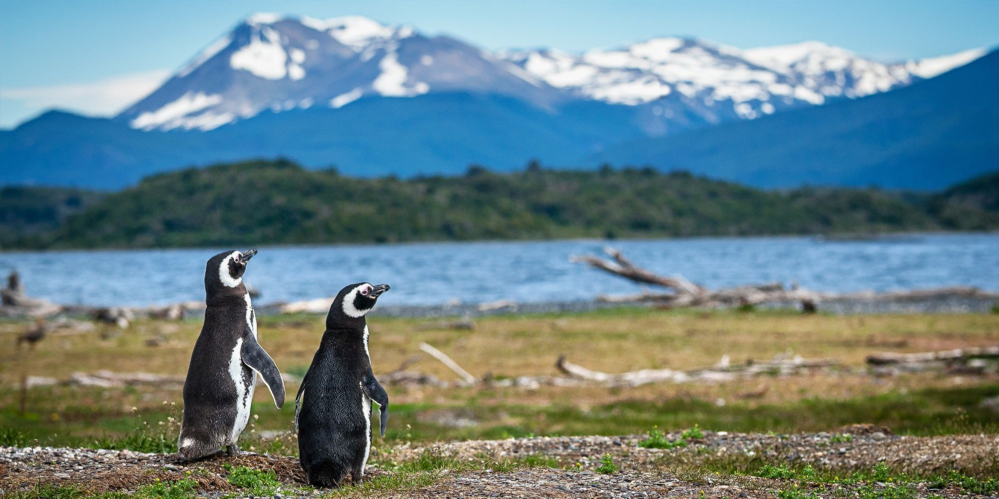 You Can Take Volunteer Vacations to Places like Patagonia? Sign Us Up!