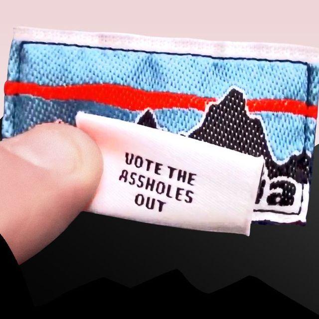 etiqueta patagonia vote assholes out
