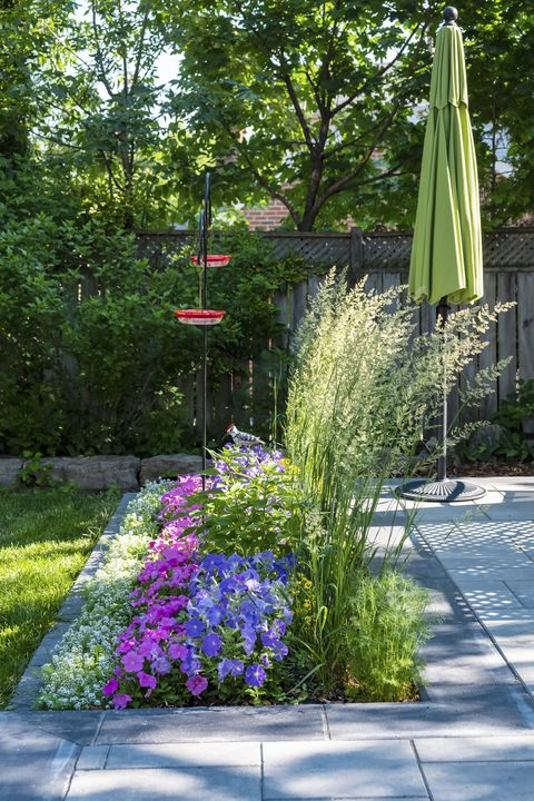 beautiful small garden filled with flowers and two red hummingbird feeders on a shepherd hook