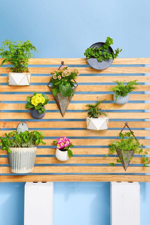 patio ideas vertical garden