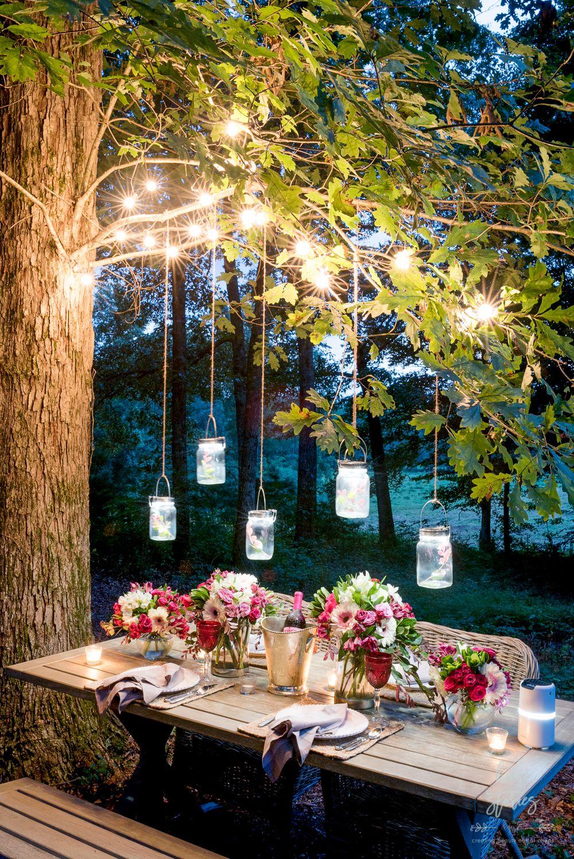Delightful Patio String Lights Trees