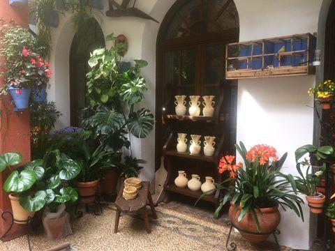Property, Houseplant, Building, Floristry, Flower, Plant, Room, Interior design, House, Courtyard,
