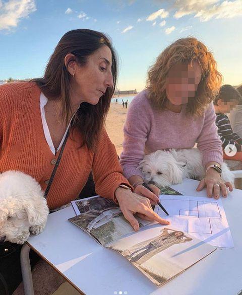 Companion dog, Fashion design,