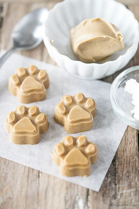 12 Best Homemade Dog Treats Recipes How To Make Diy Dog Treats
