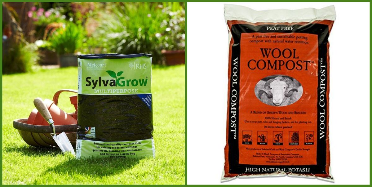 5 peat-free composts for an eco-friendly gardener