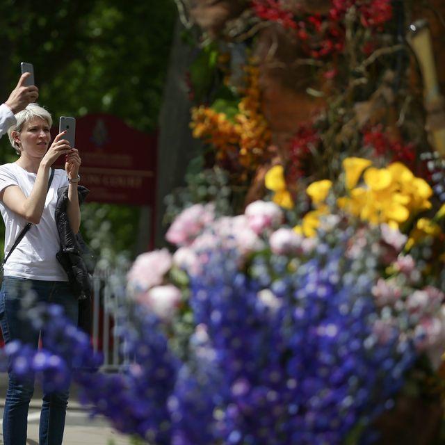 chelsea flower show entrance display