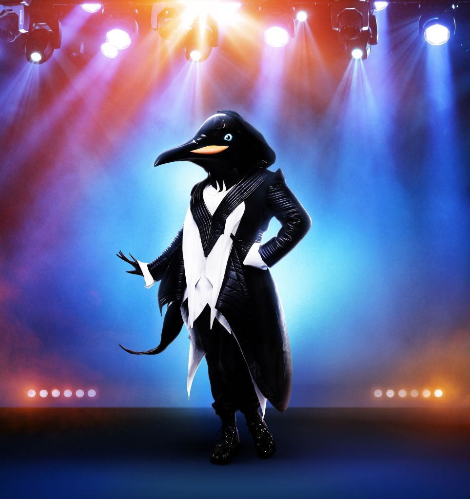 Who Is the Penguin On 'The Masked Singer?' Fans Finally Know Her Identity