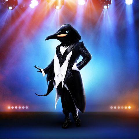 penguin masked singer