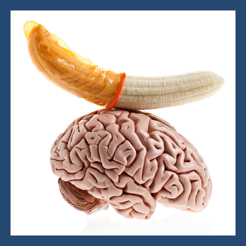 Brain, Brain, Organ, Food, Human anatomy, Dish, Cuisine,