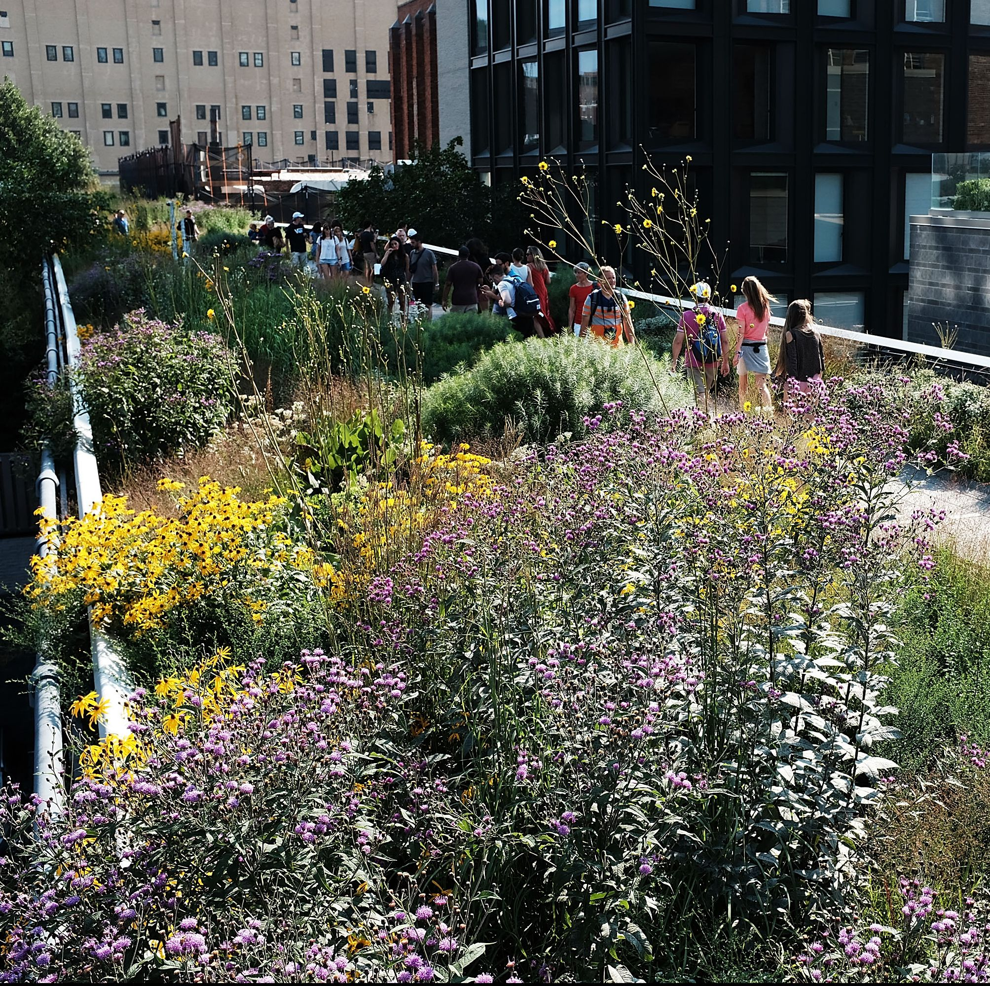 New Yorkers Enjoy High Line Park In 80 Degree Summer Weather