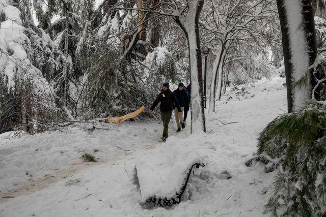 dos jóvenes andan entre las ramas caídas de un parque nevado en madrid durante el temporal filomena