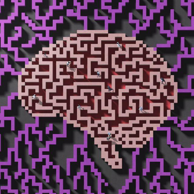 people walking in a  maze shaped as a brain