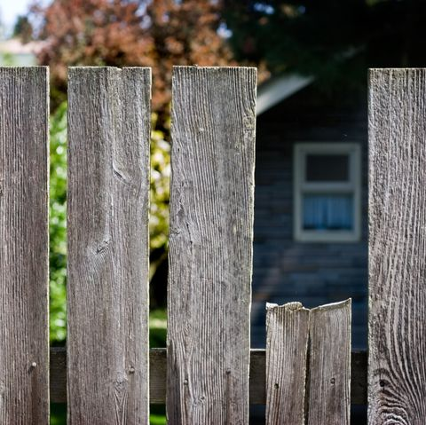 Garden fence looking into a neighbour's house