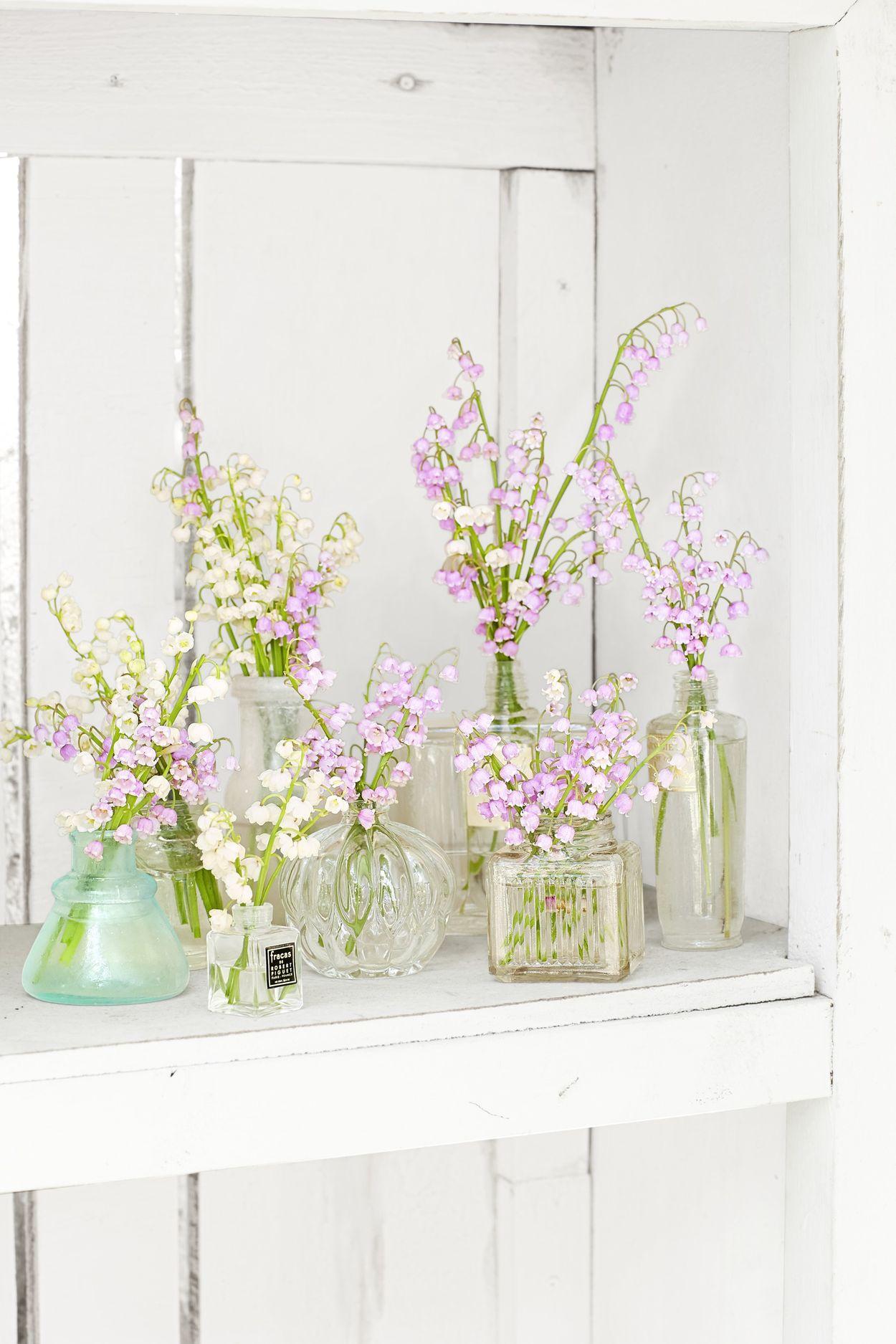 玻璃瓶插花