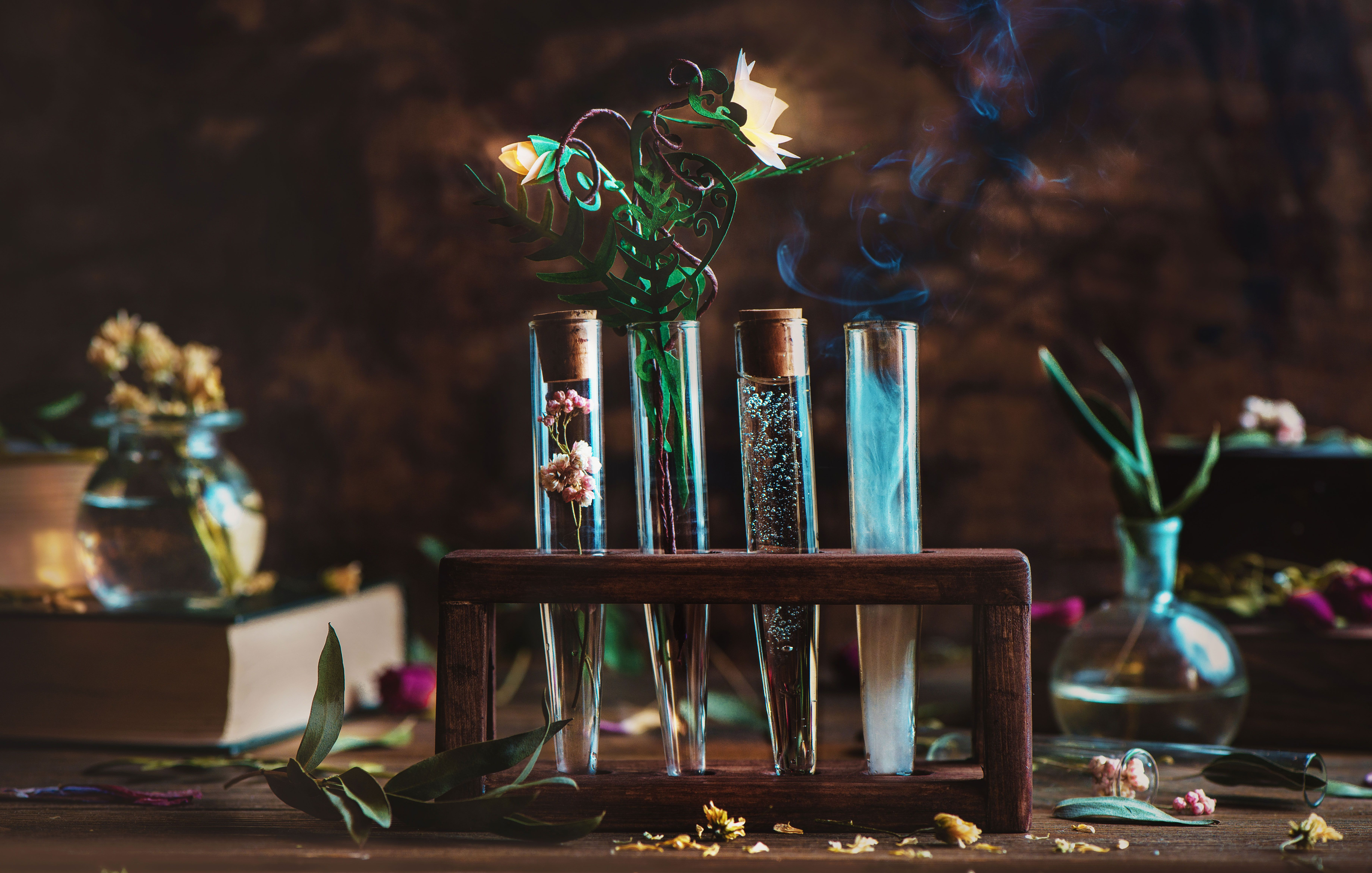 Decoding your perfume: Why scents are the modern-day magic