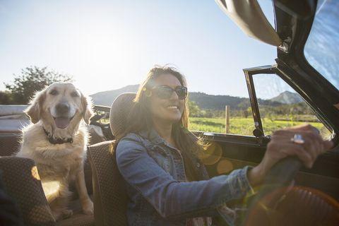 Mujer viajando con su perro en coche