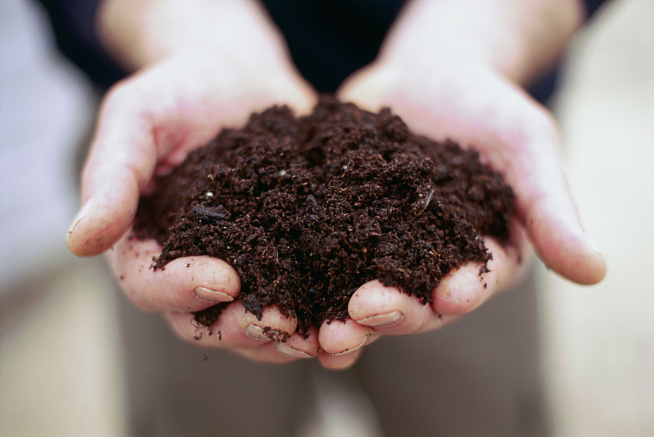 Human Composting Wants To Make Death More Green