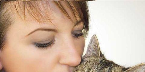 pet-love-allergy-art.jpg
