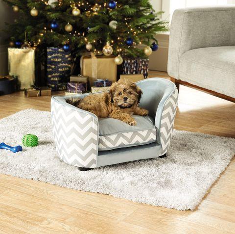 Aldi dog bed - Aldi special buys