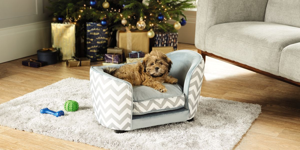Aldi Special Buys Aldi Selling 163 39 99 Pet Sofa Bed For