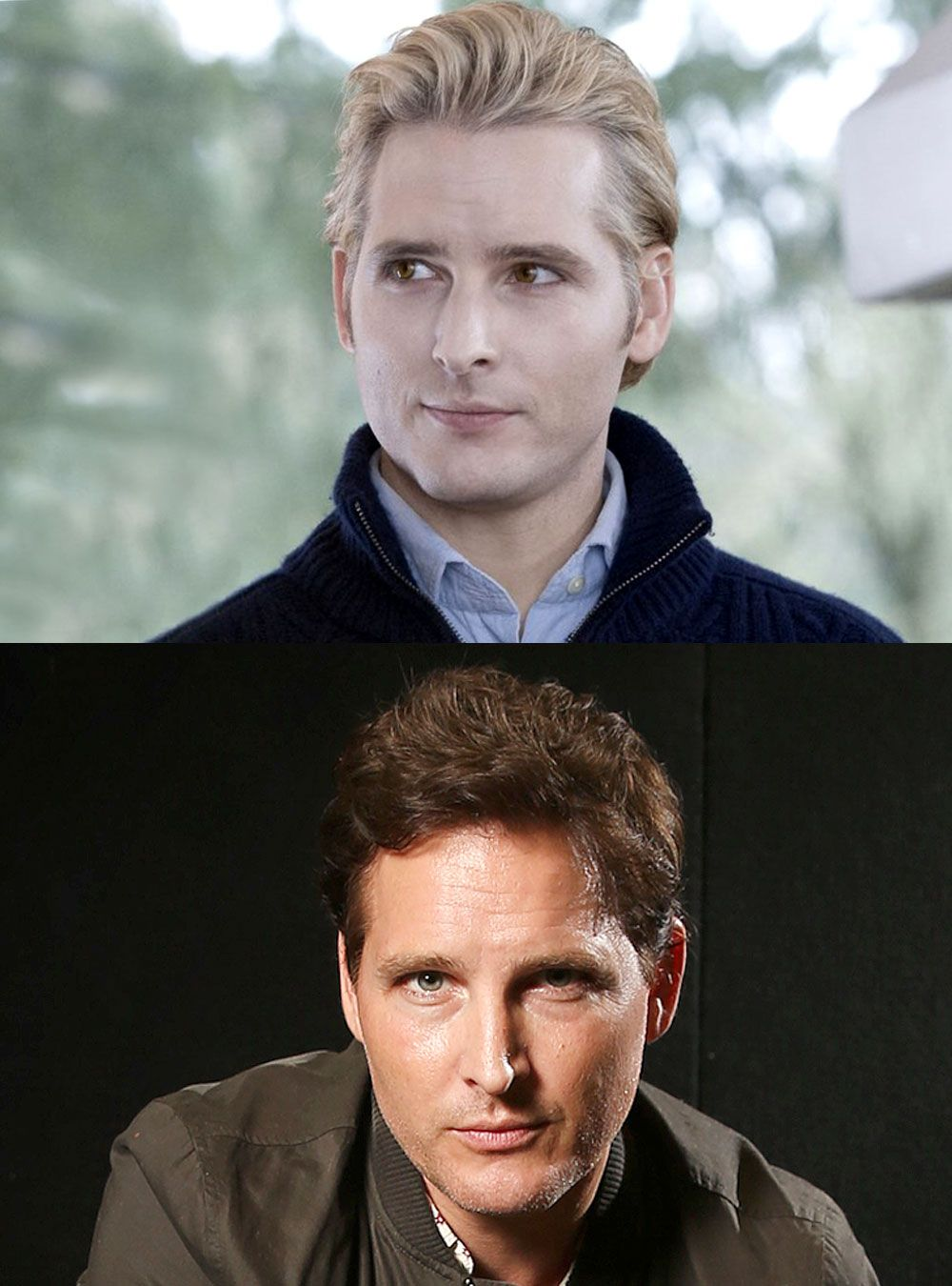 twilight cast peter facinelli