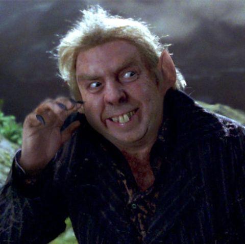peter pettigrew timothy spall