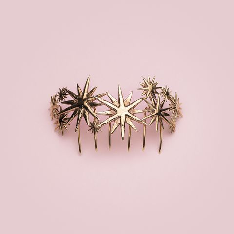 Metal, Fashion accessory, Jewellery, Brooch, Plant, Branch, Silver,