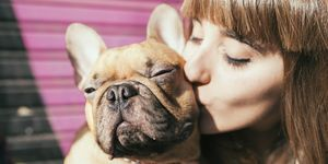 Portrait of young woman kissing French bulldog