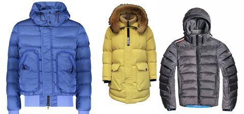 Jacket, Clothing, Hood, Outerwear, Sleeve, Puffer, Jersey, Hoodie, Coat, Top,