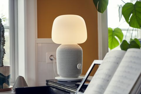 Lamp, Lighting, Lampshade, Room, Interior design, Light fixture, Lighting accessory, Flowerpot, Furniture, Material property,