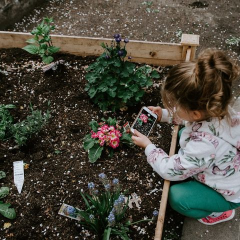 11 fun nature learning activities for kids