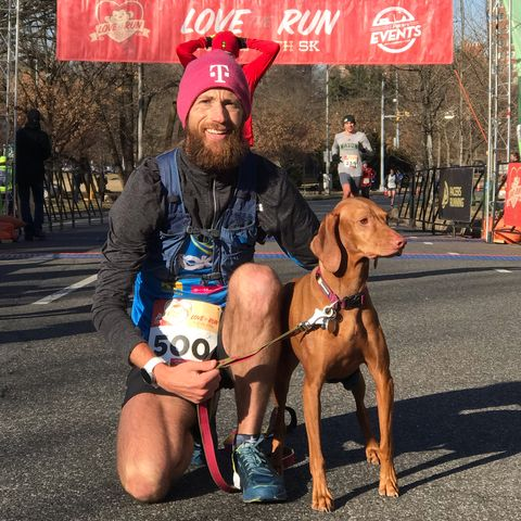 Dog, Mammal, Canidae, Dog breed, Vizsla, Carnivore, Sporting Group, Leash, Fawn, Muscle,