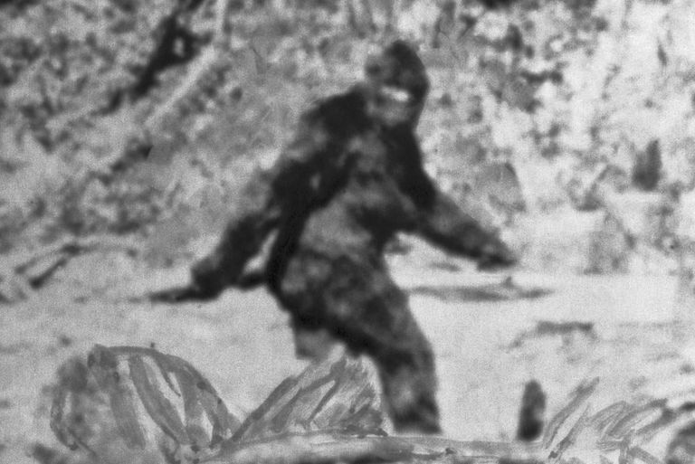 The FBI Just Released Bigfoot's Official File