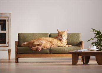 Mobili Per Gatti Ikea : Il nuovo must dell arredamento il divano per gatti