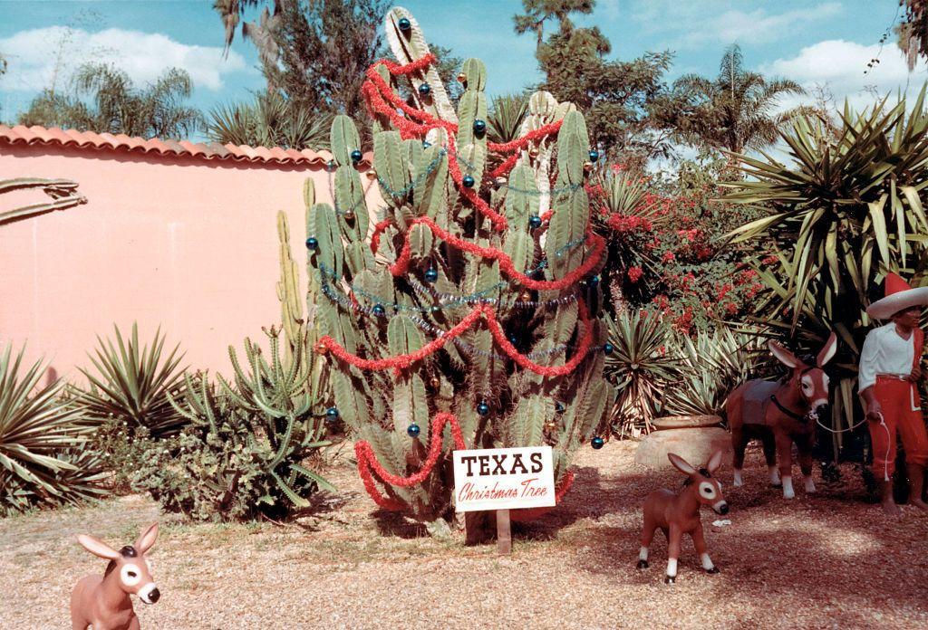 Su Amazon c'è un albero di Natale a forma di cactus che è gia il preferito di Internet