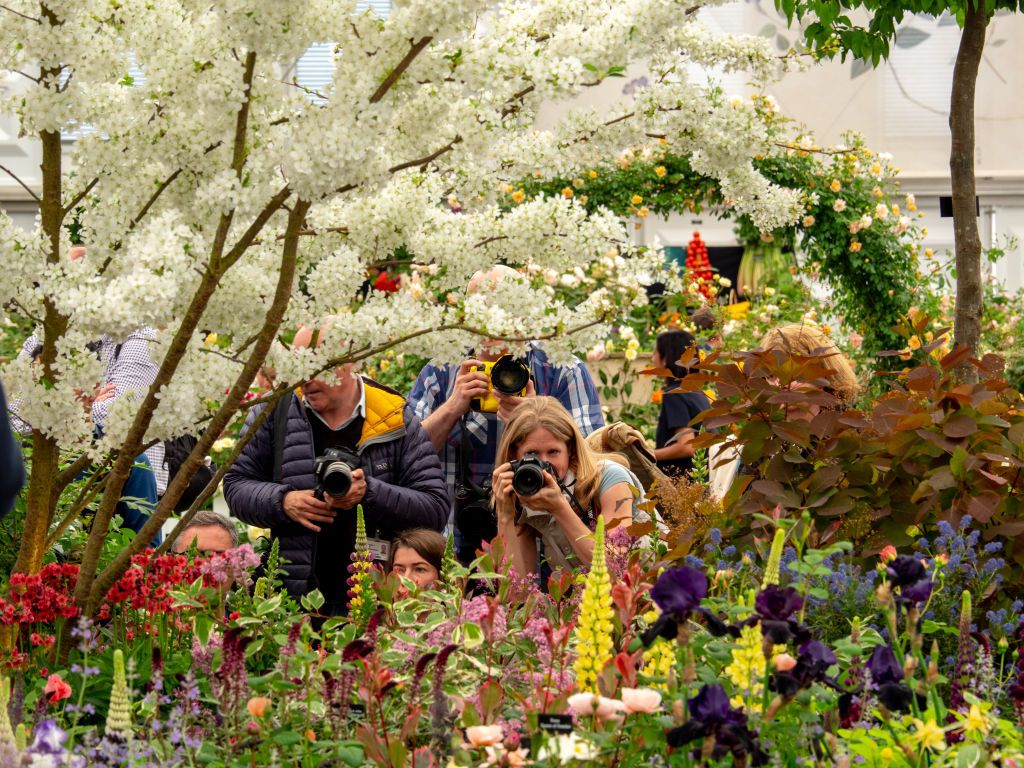 Everything you need to know about the RHS Chelsea Flower Show 2020