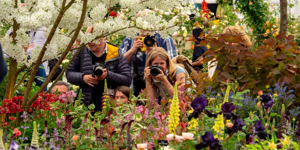 RHS cancels Chelsea Flower Show 2020