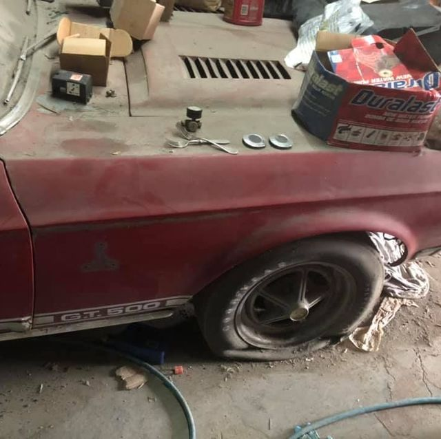 30年の眠りから覚めた1968年型「マスタング シェルビー GT500」【写真集】