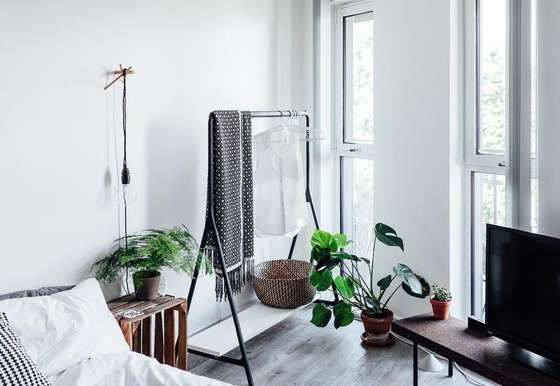 Le piante verdi che purificano l aria in camera da letto