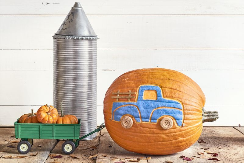 95+ Pumpkin Decorating Ideas We Guarantee You've Never Seen Before